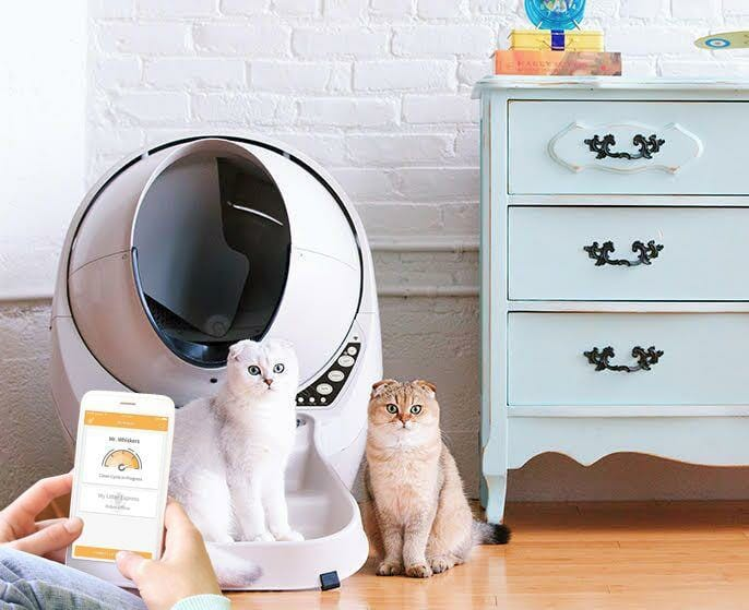Litter Robot III Open Air with Connect